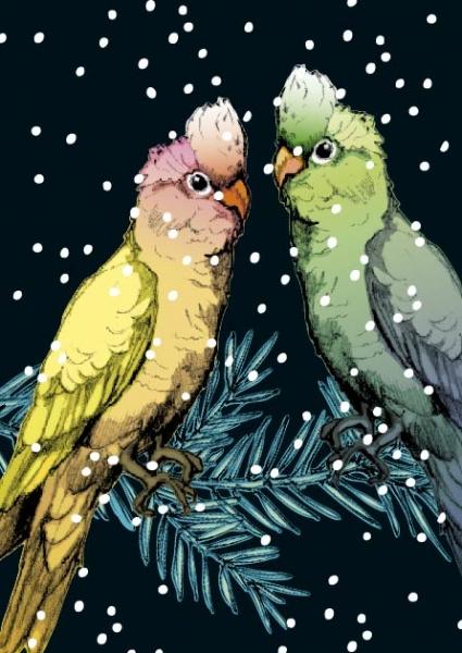 IL0130 Lotte und Theo Weihnachten illi Postkarte